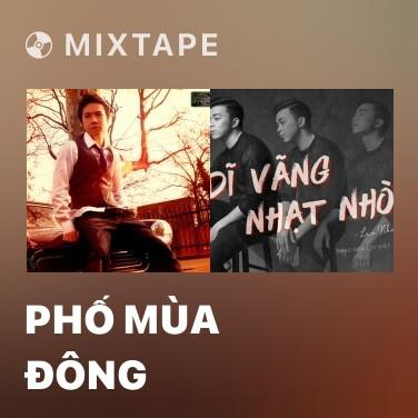 Mixtape Phố Mùa Đông - Various Artists