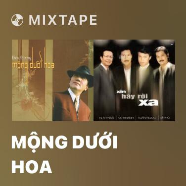 Radio Mộng Dưới Hoa - Various Artists