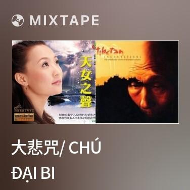 Radio 大悲咒/ Chú Đại Bi - Various Artists