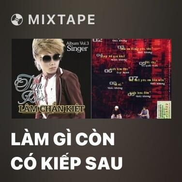 Radio Làm Gì Còn Có Kiếp Sau - Various Artists