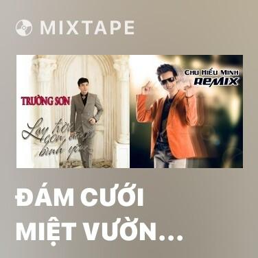 Mixtape Đám Cưới Miệt Vườn (Remix) - Various Artists