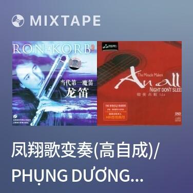 Radio 凤翔歌变奏(高自成)/ Phụng Dương Ca Biến Tấu - Various Artists