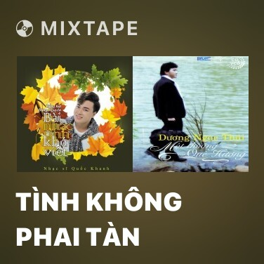 Mixtape Tình Không Phai Tàn - Various Artists