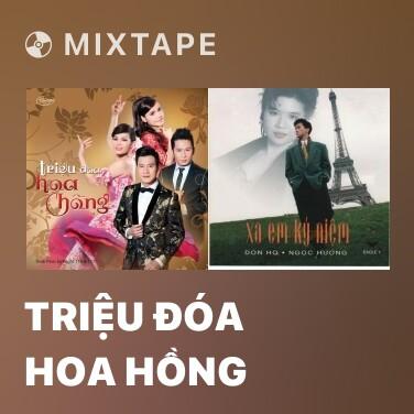 Radio Triệu Đóa Hoa Hồng - Various Artists