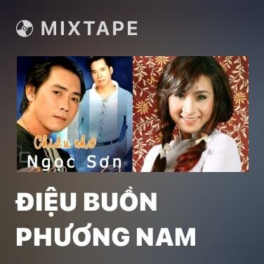 Mixtape Điệu Buồn Phương Nam - Various Artists