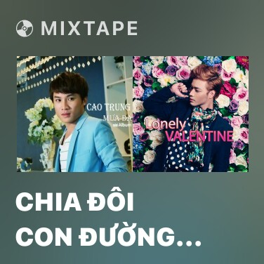 Radio Chia Đôi Con Đường Remix - Various Artists