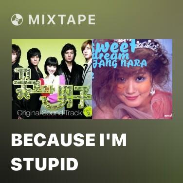 Mixtape Because I'm Stupid - Various Artists