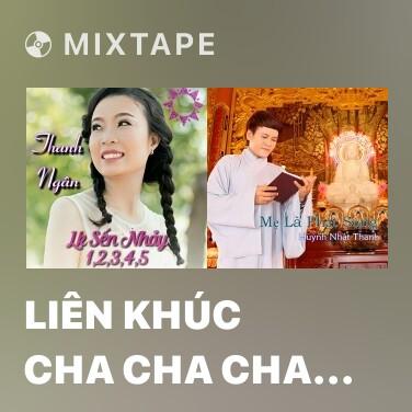 Mixtape Liên Khúc Cha Cha Cha Giận Hờn 2 - Various Artists