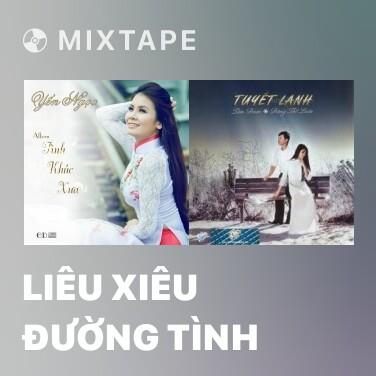Mixtape Liêu Xiêu Đường Tình - Various Artists