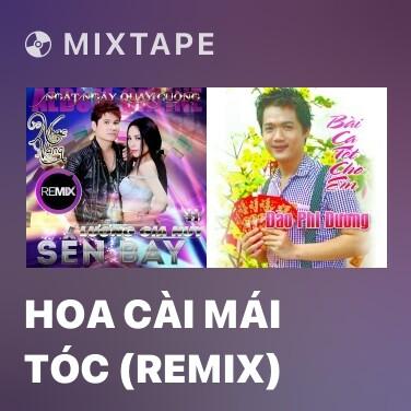 Mixtape Hoa Cài Mái Tóc (Remix)