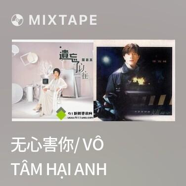 Mixtape 无心害你/ Vô Tâm Hại Anh - Various Artists