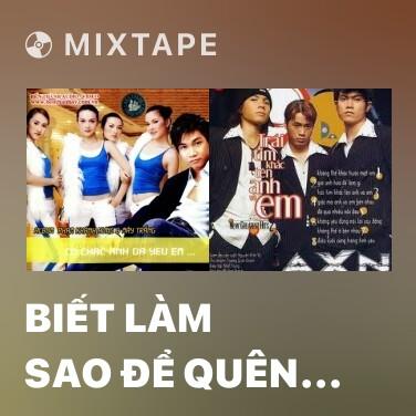 Mixtape Biết Làm Sao Để Quên Em - Various Artists