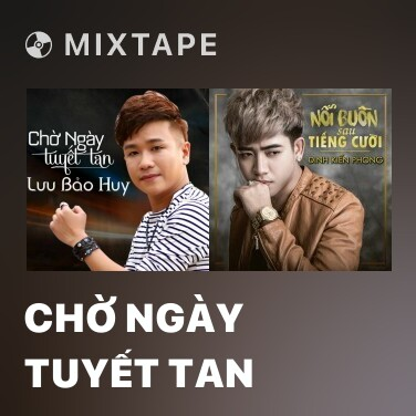 Mixtape Chờ Ngày Tuyết Tan - Various Artists
