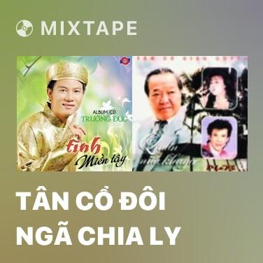 Mixtape Tân Cổ Đôi Ngã Chia Ly - Various Artists