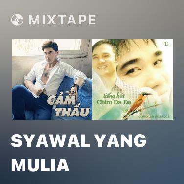 Radio Syawal Yang Mulia - Various Artists