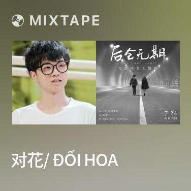 Radio 对花/ Đối Hoa - Various Artists