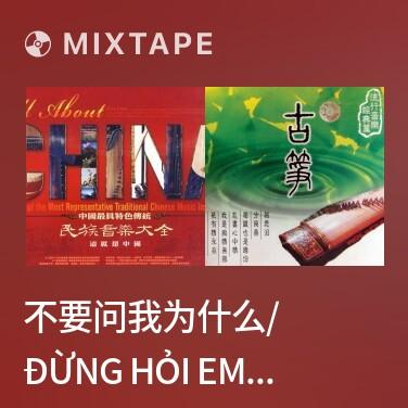 Radio 不要问我为什么/ Đừng Hỏi Em Vì Sao - Various Artists