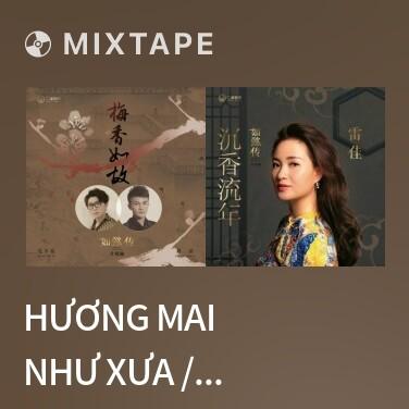 Mixtape Hương Mai Như Xưa / 梅香如故 - Various Artists