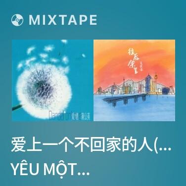 Mixtape 爱上一个不回家的人(林忆莲)/ Yêu Một Người Không Trở Về Nhà - Various Artists