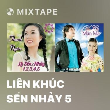Mixtape Liên Khúc Sến Nhảy 5 - Various Artists