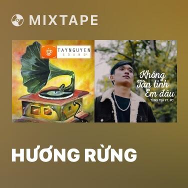 Radio Hương Rừng - Various Artists