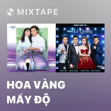 Mixtape Hoa Vàng Mấy Độ - Various Artists