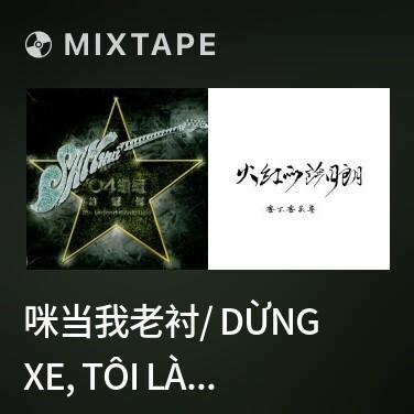 Mixtape 咪当我老衬/ Dừng Xe, Tôi Là Thằng Ngốc - Various Artists
