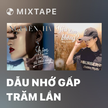 Mixtape Dẫu Nhớ Gấp Trăm Lần - Various Artists