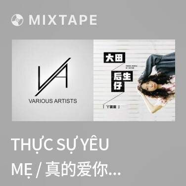 Mixtape Thực Sự Yêu Mẹ / 真的爱你 (Remix) - Various Artists