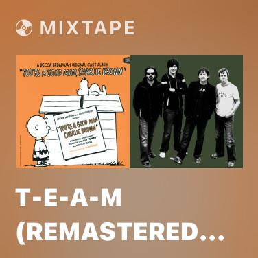 Mixtape T-E-A-M (Remastered Album Version) - Various Artists