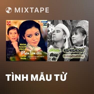 Radio Tình Mẫu Tử - Various Artists