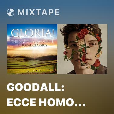 Mixtape Goodall: Ecce Homo (Theme from Mr Bean) -