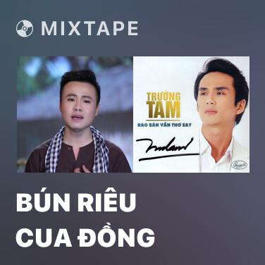 Radio Bún Riêu Cua Đồng - Various Artists