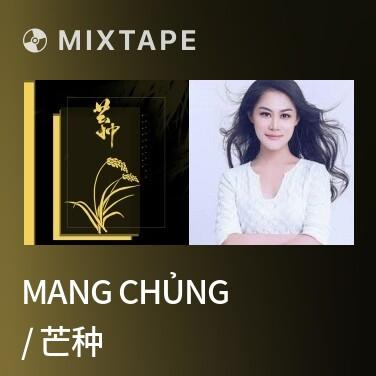 Mixtape Mang Chủng / 芒种 - Various Artists