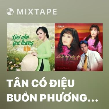 Mixtape Tân Cổ Điệu Buồn Phương Nam - Various Artists