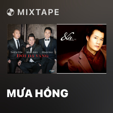 Mixtape Mưa Hồng - Various Artists