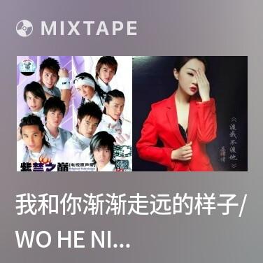 Mixtape 我和你渐渐走远的样子/ Wo He Ni Jian Jian Zou Yuan De Yang Zi -