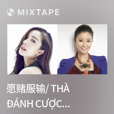 Mixtape 愿赌服输/ Thà Đánh Cược Còn Hơn Chịu Thua - Various Artists