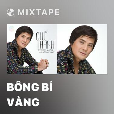 Mixtape Bông Bí Vàng - Various Artists