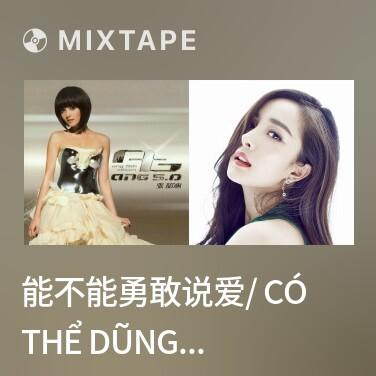 Radio 能不能勇敢说爱/ Có Thể Dũng Cảm Nói Yêu Không - Various Artists