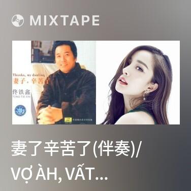 Mixtape 妻了辛苦了(伴奏)/ Vợ Àh, Vất Vả Rồi (Nhạc Đệm) - Various Artists