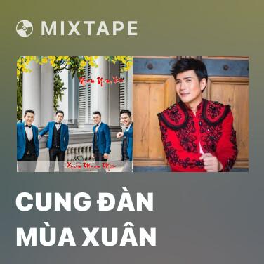 Radio Cung Đàn mùa Xuân - Various Artists