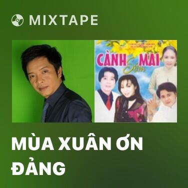 Mixtape Mùa Xuân Ơn Đảng - Various Artists