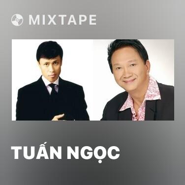 Radio Tuấn Ngọc - Various Artists