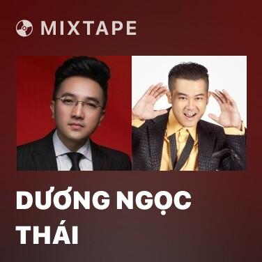Radio Dương Ngọc Thái - Various Artists
