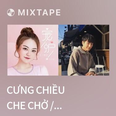 Mixtape Cưng Chiều Che Chở / 宠护 - Various Artists