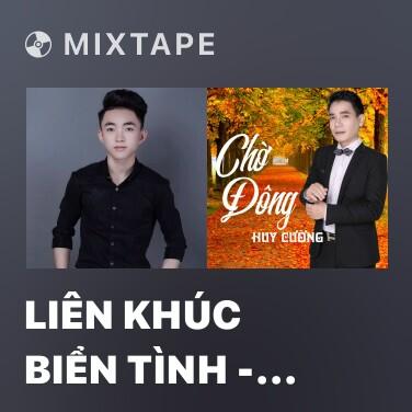 Mixtape Liên Khúc Biển Tình - Cay Đắng Bờ Môi - Various Artists