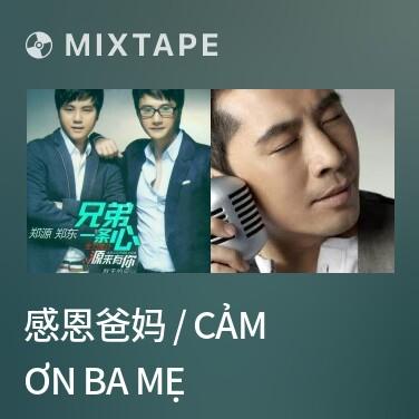 Mixtape 感恩爸妈 / Cảm Ơn Ba Mẹ - Various Artists