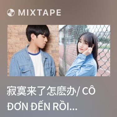 Radio 寂寞来了怎麽办/ Cô Đơn Đến Rồi Thì Sao - Various Artists