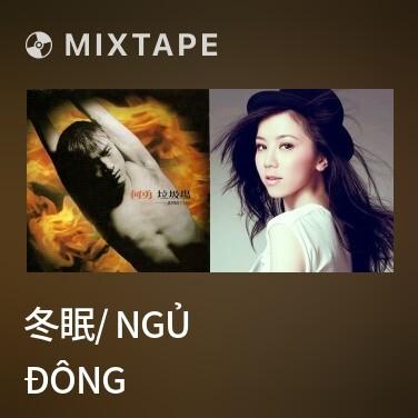 Mixtape 冬眠/ Ngủ Đông - Various Artists